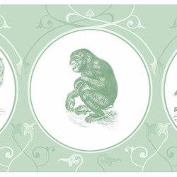 Zoological Garden | Cornici | GMM