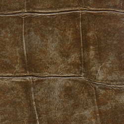 Anguille Big Croco Legend | VP 426 08 | Wall coverings / wallpapers | Elitis