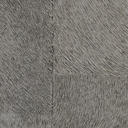 Indomptée | Appaloosa HPC  | CV 113 05 | Wall coverings / wallpapers | Elitis
