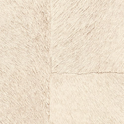 Indomptée | Appaloosa HPC  | CV 113 07 | Wall coverings / wallpapers | Elitis
