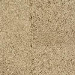 Indomptée | Appaloosa HPC  | CV 113 09 | Wall coverings / wallpapers | Elitis