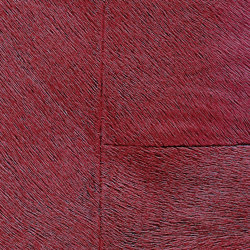 Indomptée | Appaloosa HPC  | CV 113 12 | Wall coverings / wallpapers | Elitis