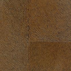 Indomptée | Appaloosa HPC  | CV 113 13 | Wall coverings / wallpapers | Elitis