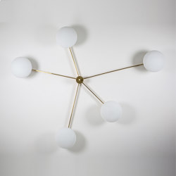 Stella Starfish | Wall lights | DESIGNforMACHA