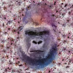 Monkey Kong 01 | Wall art / Murals | INSTABILELAB