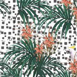 Perroquet 02 | Wall art / Murals | INSTABILELAB