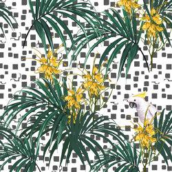 Perroquet 03 | Wall art / Murals | INSTABILELAB