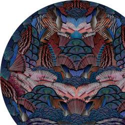 Extinct Animals   Calligraphy Bird   Rugs   moooi carpets