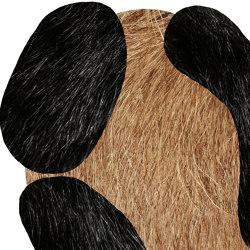 Extinct Animals | Bearded Leopard | Rugs | moooi carpets