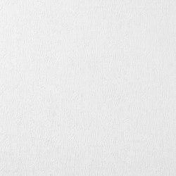 Papel pintado no tejido para pintar EDEM 83104BR70 | Revestimientos de paredes / papeles pintados | e-Delux