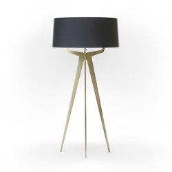 No. 35 Floor Lamp Matt Collection - Deep Black - Brass | Free-standing lights | BALADA & CO.