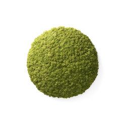 Nordgröna