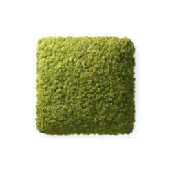 Convex Square | Tableaux acoustiques décoratifs | Nordgröna