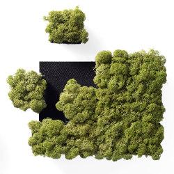 Pixel | Living / Green walls | Nordgröna
