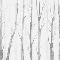 Alberi Zen Light Grey | Wall art / Murals | TECNOGRAFICA
