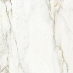 Calacatta Gold 2 | Lastre plastica | TECNOGRAFICA