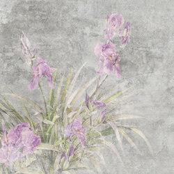 Il Giardino Di Iris   Arte   TECNOGRAFICA