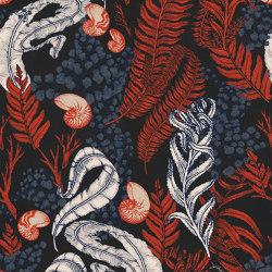 Nautilus Coral Reef | Wall art / Murals | TECNOGRAFICA