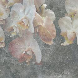 Paestum Color Light   Arte   TECNOGRAFICA