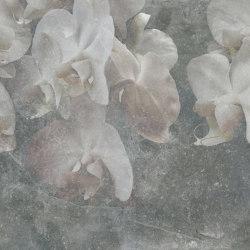 Paestum Grey Light | Quadri / Murales | TECNOGRAFICA