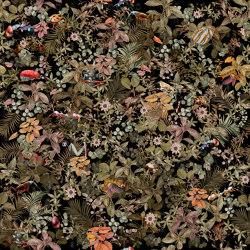 Tropicana Colorful A | Quadri / Murales | TECNOGRAFICA