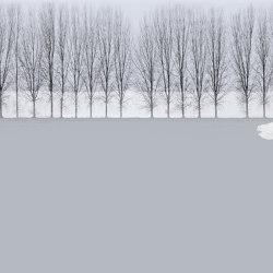 Novembrina | Bespoke wall coverings | GLAMORA