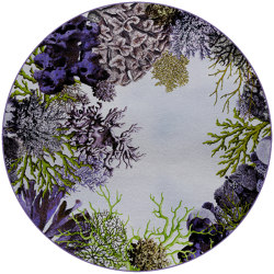 Coral Loss | CL3.01.2 | Ø 350 cm | Rugs | YO2