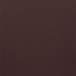 Paint Collection | Black Orchid | Pinturas | File Under Pop