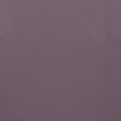 Paint Collection | Bluberry Hill | Pinturas | File Under Pop