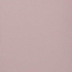Paint Collection | Desert Rose | Pinturas | File Under Pop