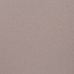 Paint Collection | Little Beige Sambo | Pinturas | File Under Pop