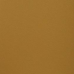 Paint Collection | Mean Mr.Mustard | Paints | File Under Pop