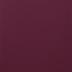 Paint Collection | Purple Haze | Pinturas | File Under Pop