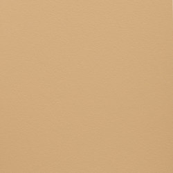 Paint Collection | Sahara Sand | Pinturas | File Under Pop