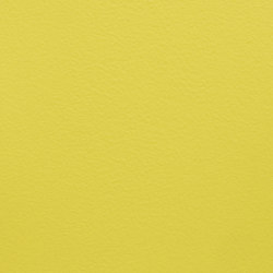 Paint Collection | Yellow Raincoat | Pinturas | File Under Pop