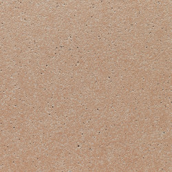 concrete skin | FE ferro larch | Concrete panels | Rieder