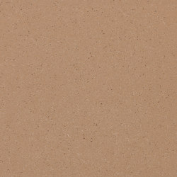 concrete skin | FL ferro light larch | Beton Platten | Rieder