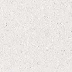 formparts | FE ferro polar white | Exposed concrete | Rieder