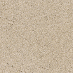 formparts | FE ferro sandstone | Exposed concrete | Rieder