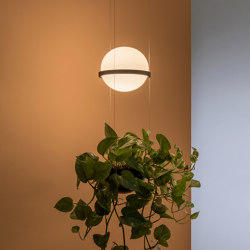 Palma 3724 Hanging lamp | Suspended lights | Vibia