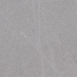 Seine-R Gris | Carrelage céramique | VIVES Cerámica