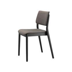 Viena Armlehnholzstuhl gepolstert | Chairs | seledue