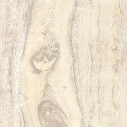 La Fabbrica - Yosemite - Shell | Piastrelle ceramica | La Fabbrica