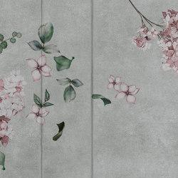 concrete | ortensia | Arte | N.O.W. Edizioni