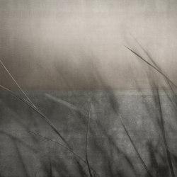 concrete | wind | Quadri / Murales | N.O.W. Edizioni