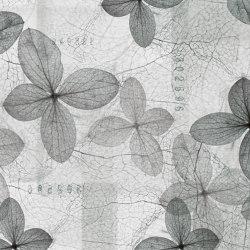watercolor | coral | Quadri / Murales | N.O.W. Edizioni