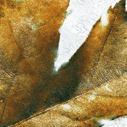 Falling | Panneaux muraux | Inkiostro Bianco
