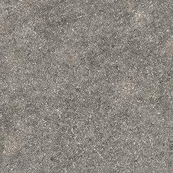 Dolmen Pro Porfido Grigio 37,5x75 | Carrelage céramique | Atlas Concorde