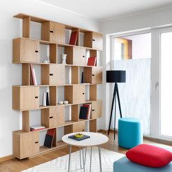 Shelf PIX6 200cm, oak veneered | Shelving | Radis Furniture
