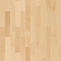 Activity Floor | Hard Maple | Wood flooring | Kährs